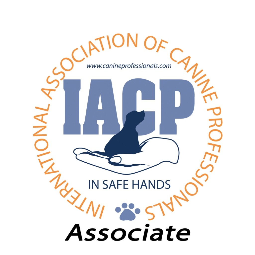 IACP logos