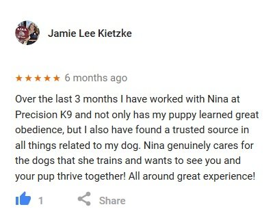 //precisionk9work.com/wp-content/uploads/2018/07/google-review-jamie-lee-kietzke.jpg